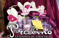 Pralino chocolates House, chocolates in lebanon
